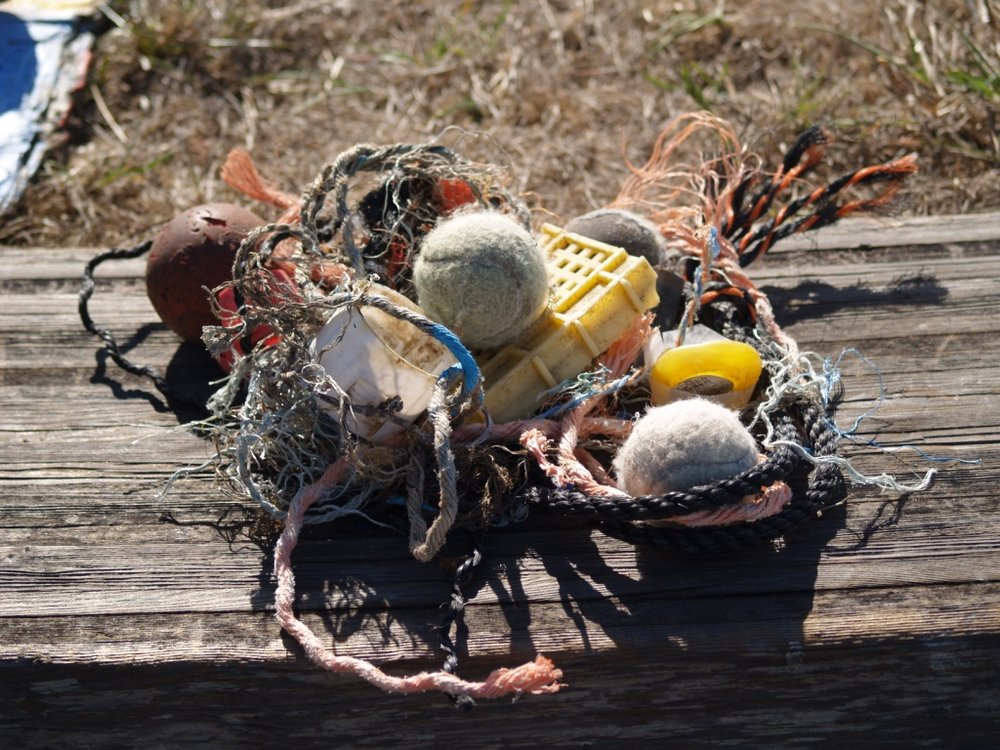 Marine debris collected by EAC and volunteers, which was re-purposed for an art show 2015-2016