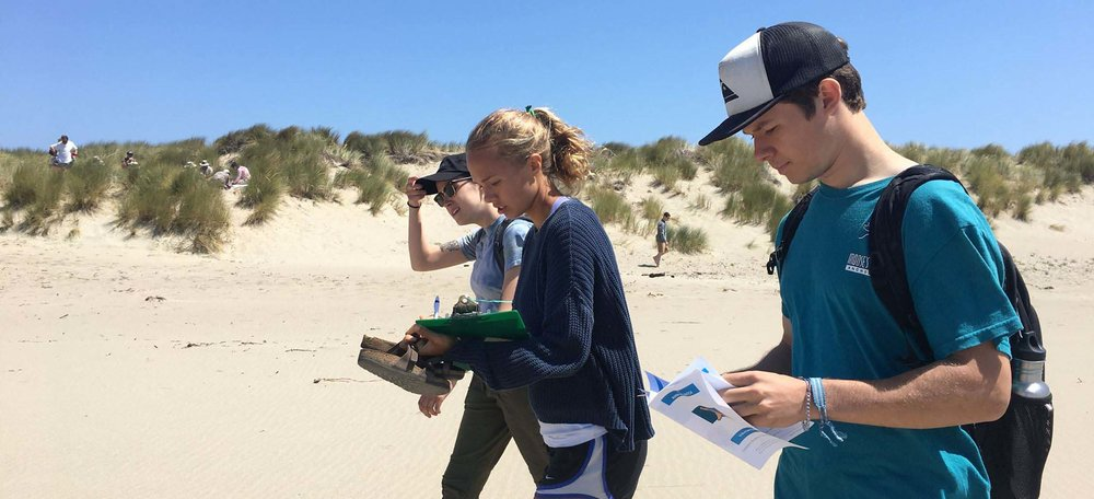 Marin MPA Watch    Seeking Summer Volunteers    Sign up for July 21st Training