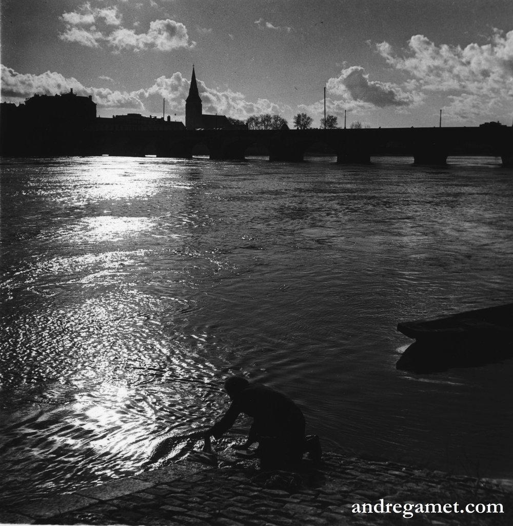 La Lavandière dans la Loire