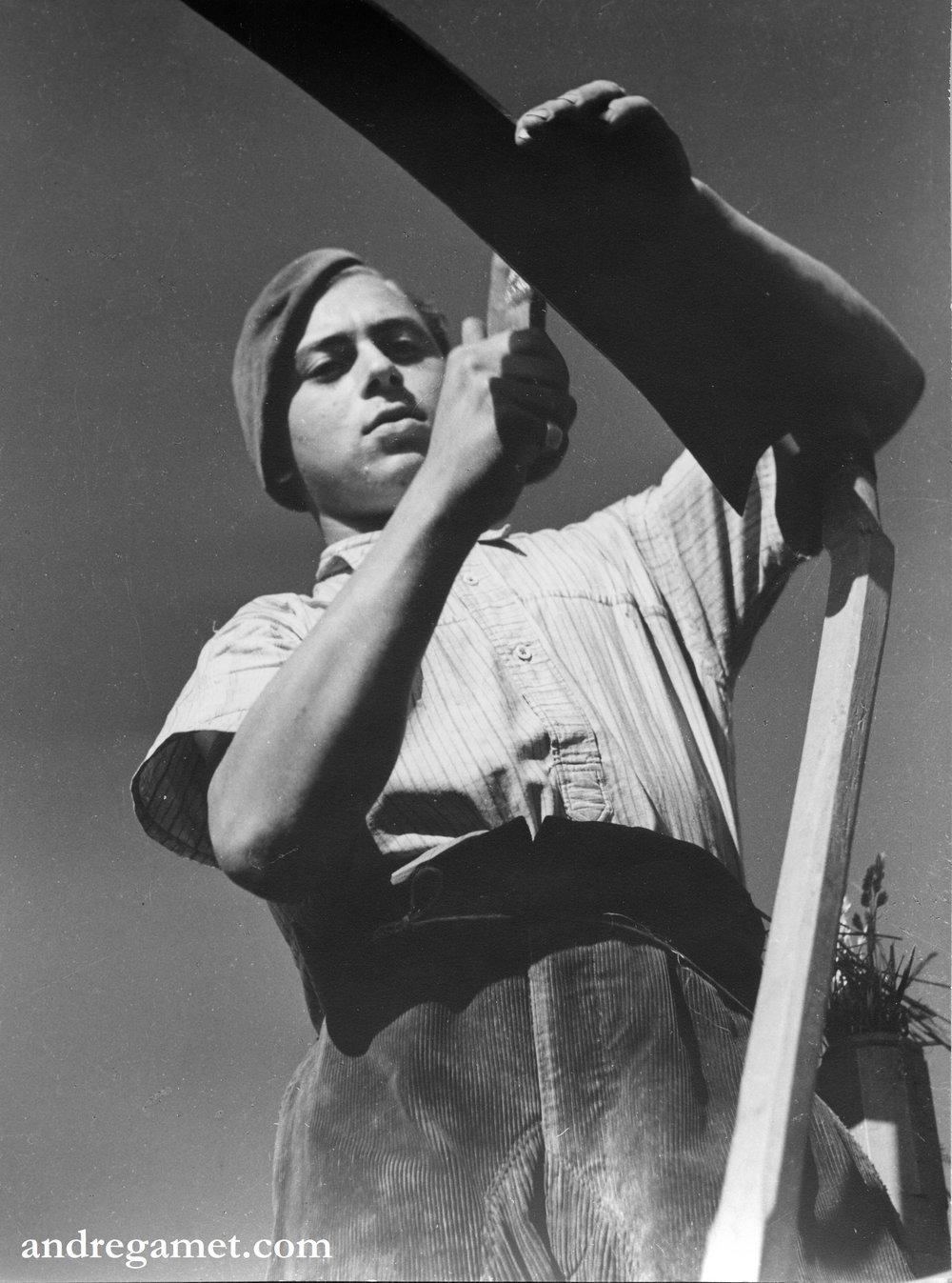Jeune faucheur, Chamboeuf, 1942.jpg