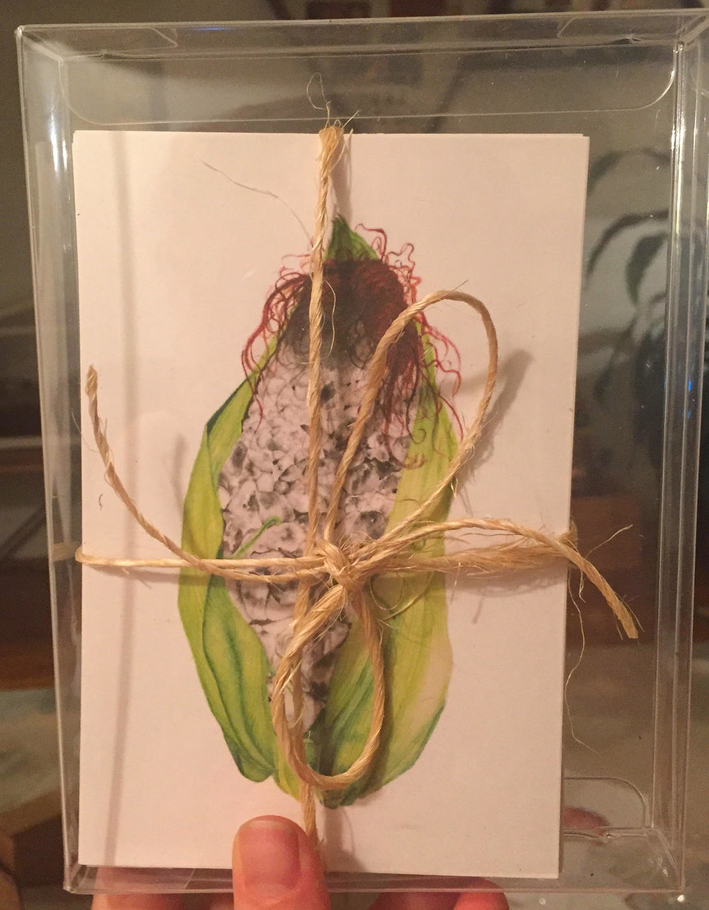 $25 Set of Postcards