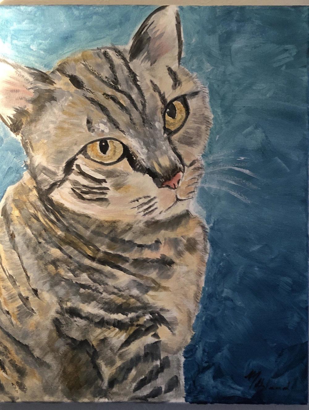 Paint you pet1.jpg