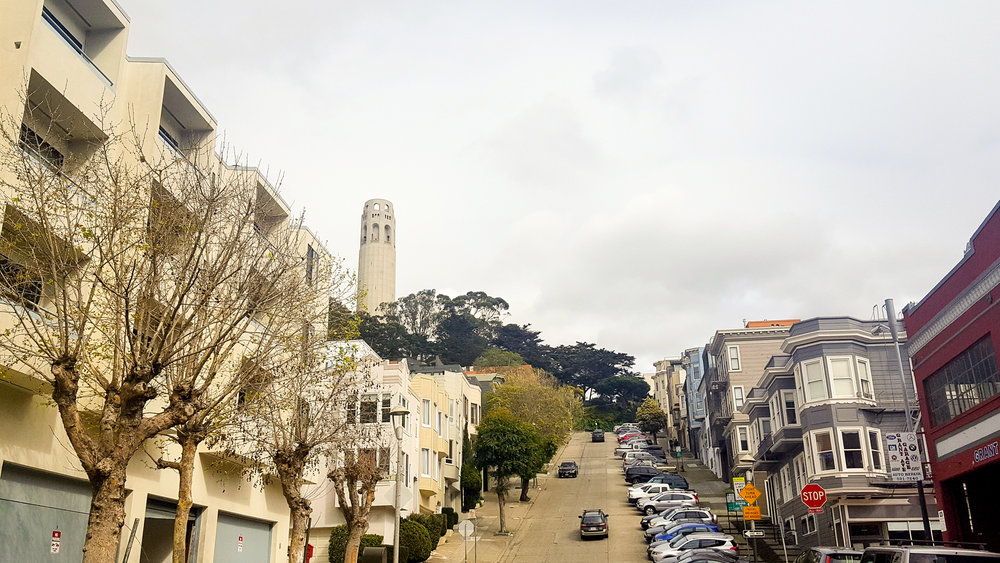 Telegraph Hill, looking at Coit Tower.