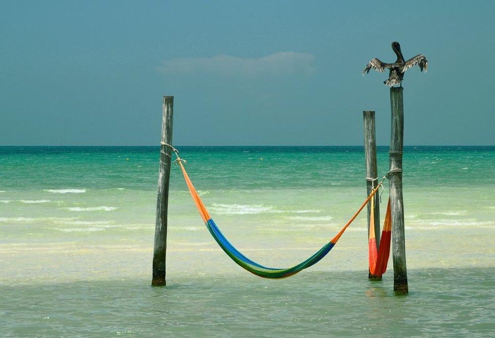 hamacas-en-mar-y-pelicano.jpg