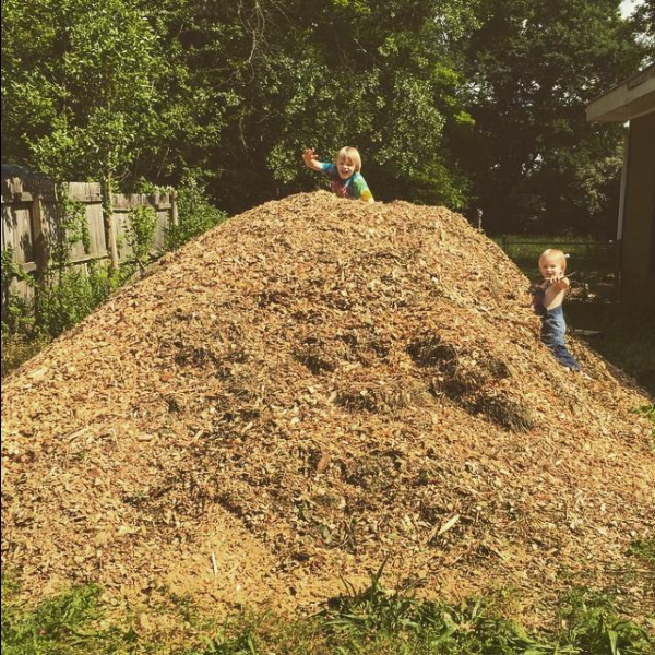 A beautiful pile of wood chips, am I right?! Oh, and those boys ... pretty cute, too.
