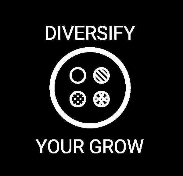 Diversify Grow.png
