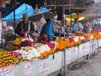 bazaar 8.jpg