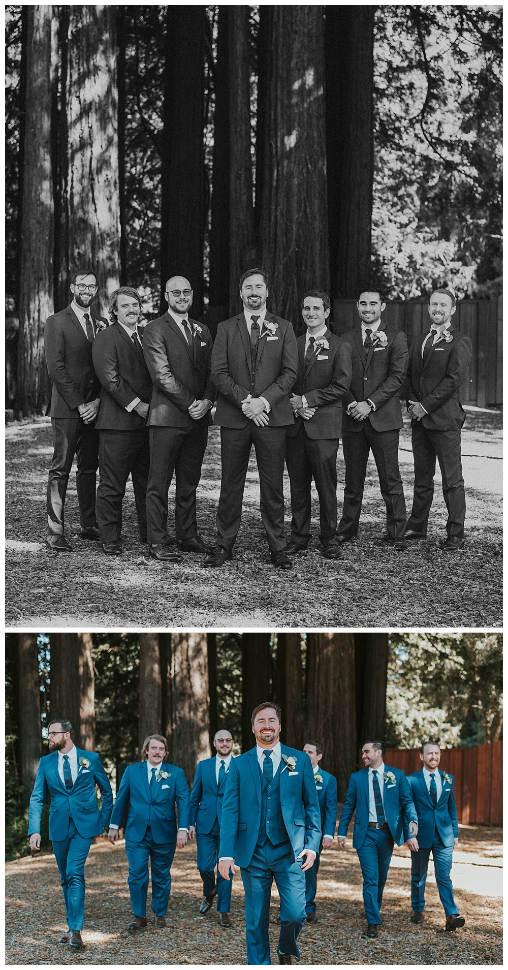 Meg's Marvels Photography - Mountain Terrace Redwood Wedding_0080.jpg