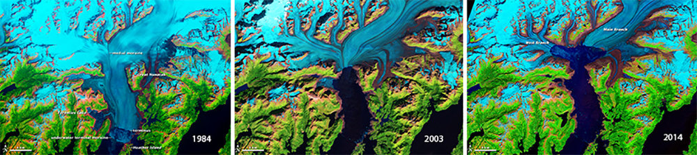 Research: Columbia Glacier's transformation over the years through NASA's Earth Observatory helped us develop visuals