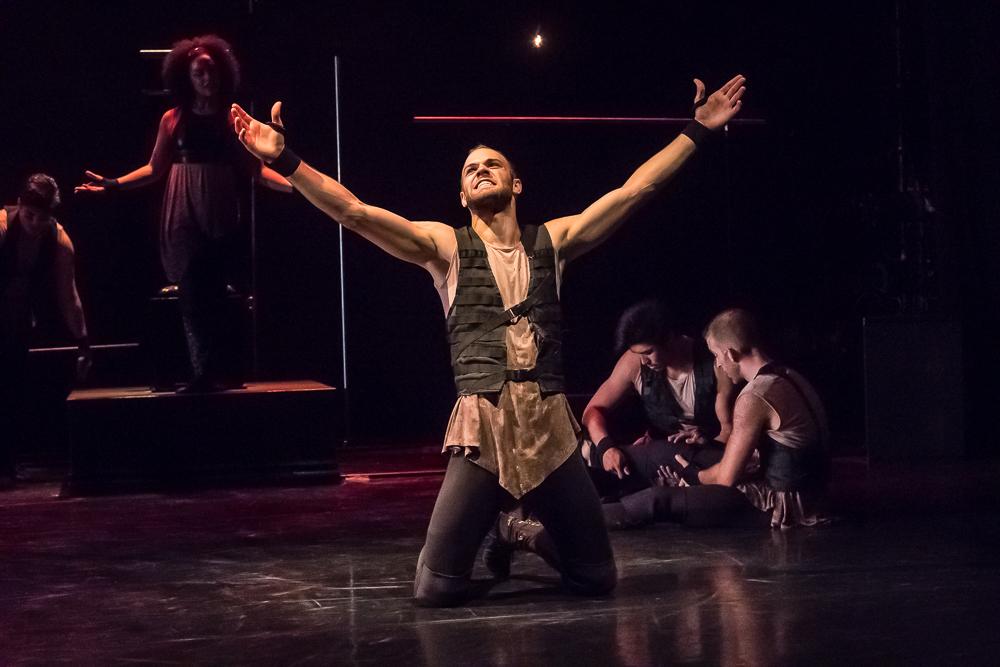 Diomedes in The Iliad: Menin (Rage)