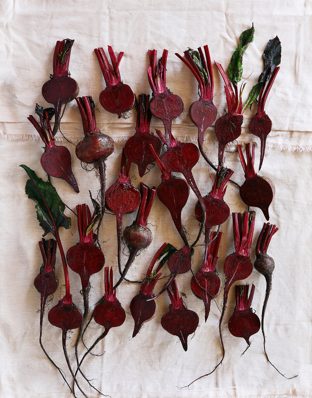 Beetroots_FINAL_003_Squarespace.jpg
