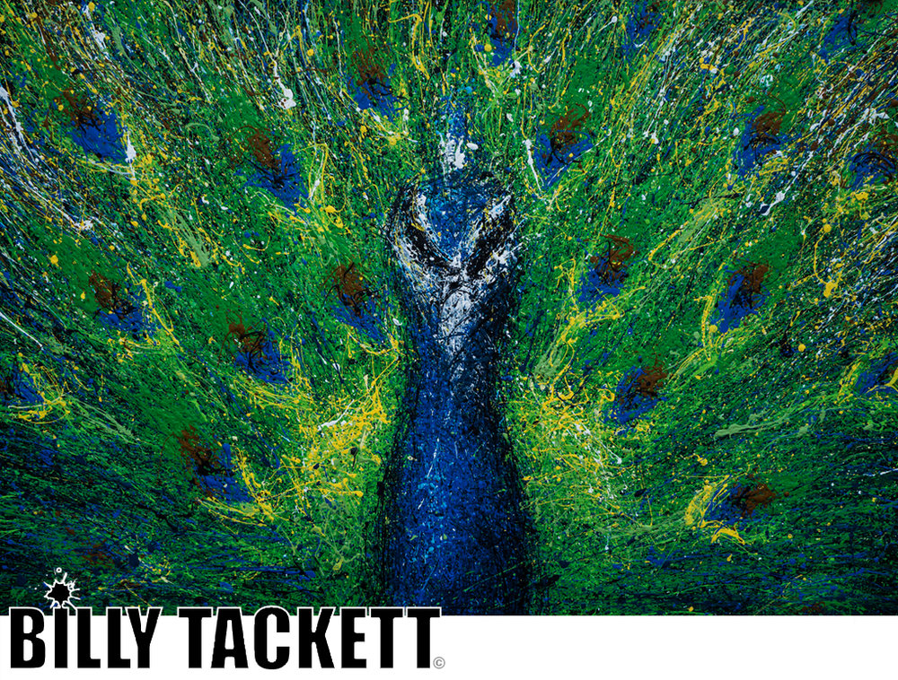 PEACOCK - SOLD