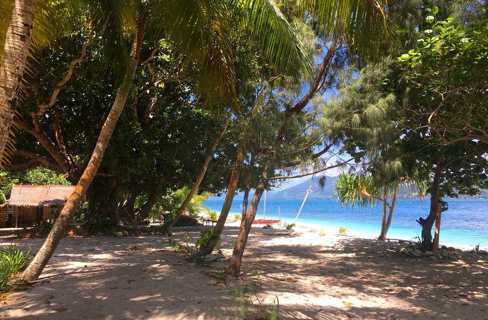 Gonubalabala Island Main Beach