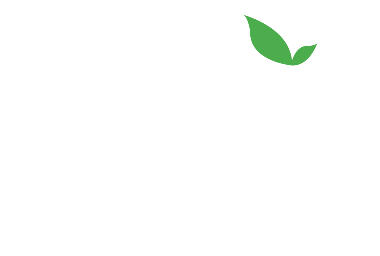 Auckland Microfinance Initiative