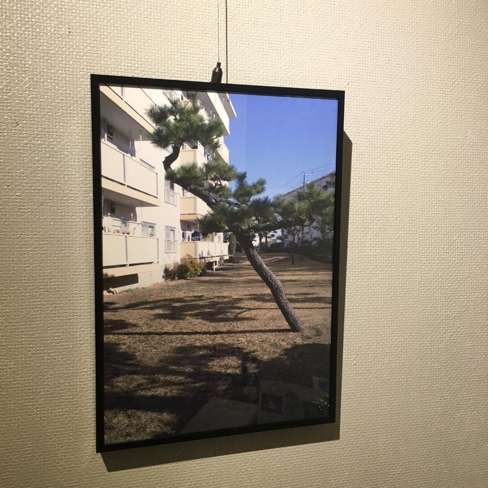 Sagami02.jpg