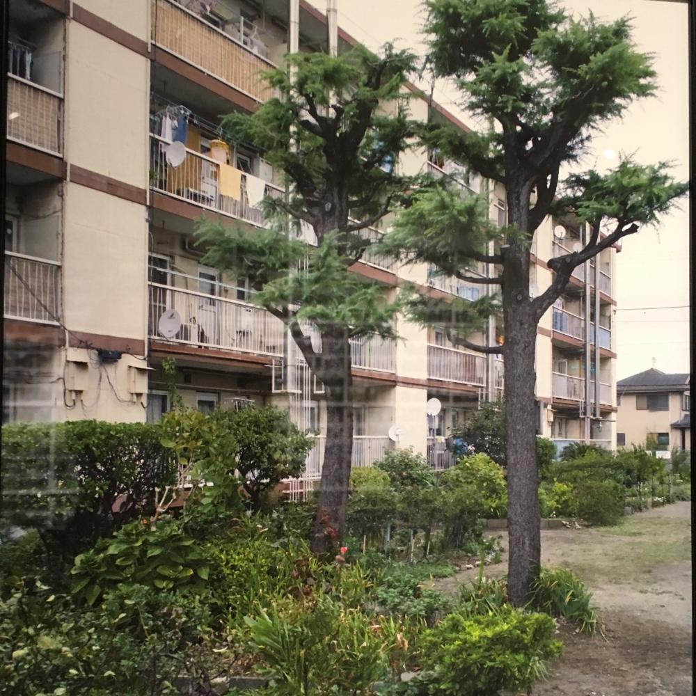 Sagami03.jpg