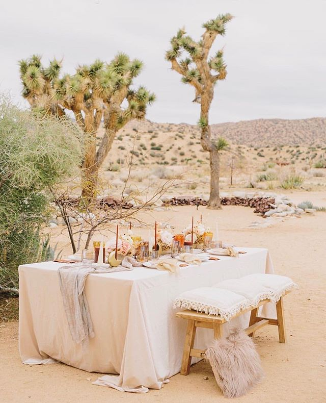 Desert luxe with @wild_heart_events, @idlewildfloral @partypleasers @eventblissca 🏜