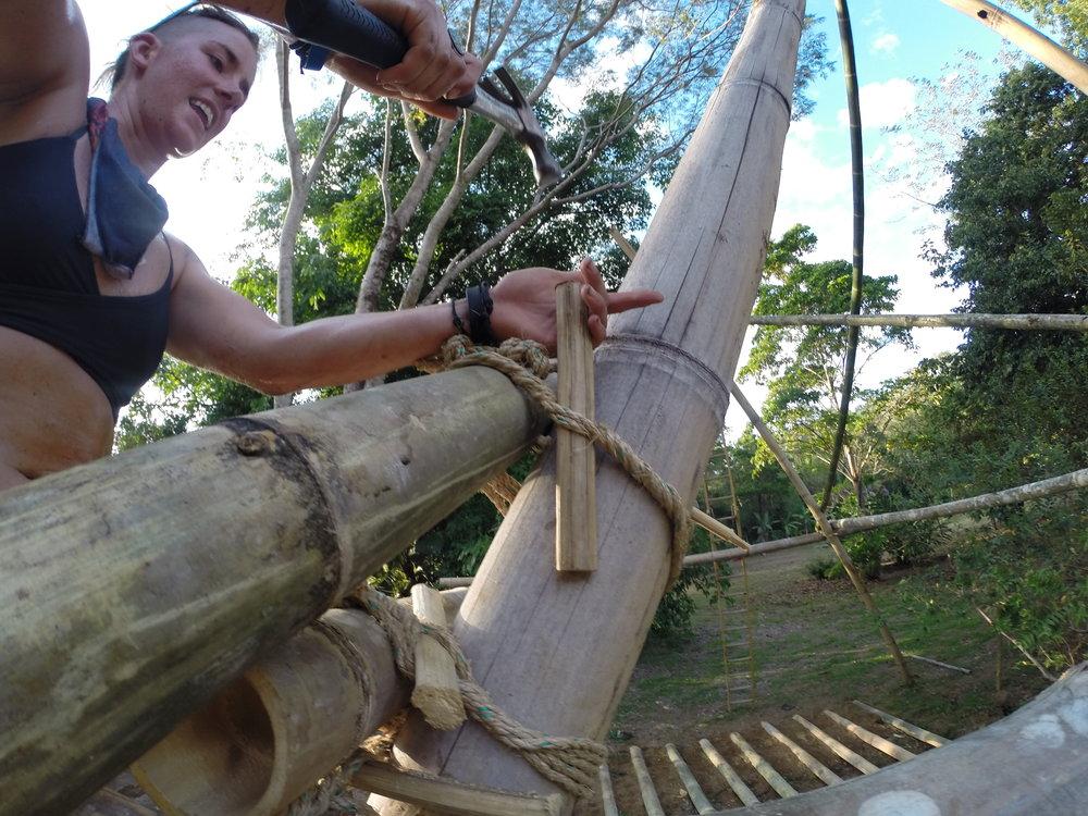 Bamboo-Photos6.jpg