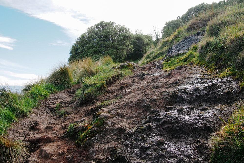 Crater Rim Vernon-20.jpg