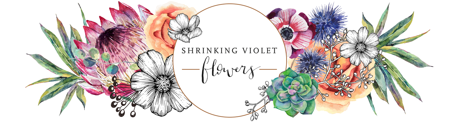 Shrinking Violet Flowers