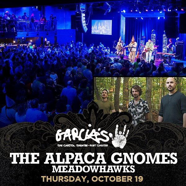 Here comes the big one! Our show this Thursday at @garciasatthecap is going to be great, can't wait to trek up and see all of our out-of-city friends 🤗. If you know someone who lives in the Westchester/CT area let them know to come by! Tickets on our Facebook page! 🐳 #Meadowhawks #Garcias #PortChester