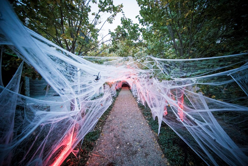halloween-2018-harringtonevents-spider-web.jpg