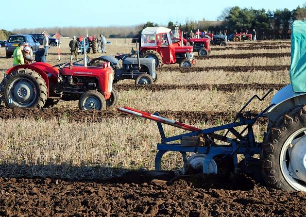Image result for ploughing match