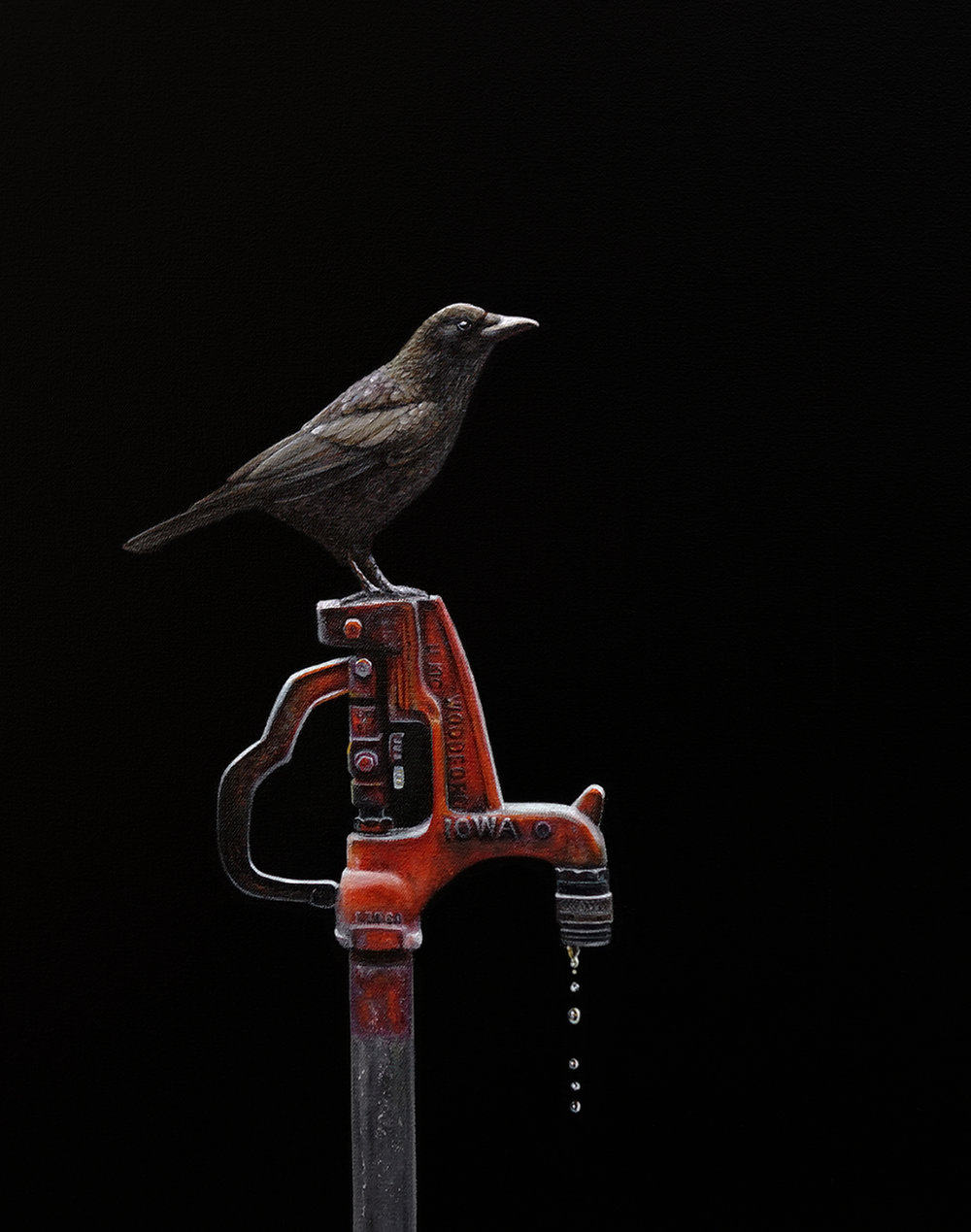 Caw  |  16 x 20  |  Oil on canvas