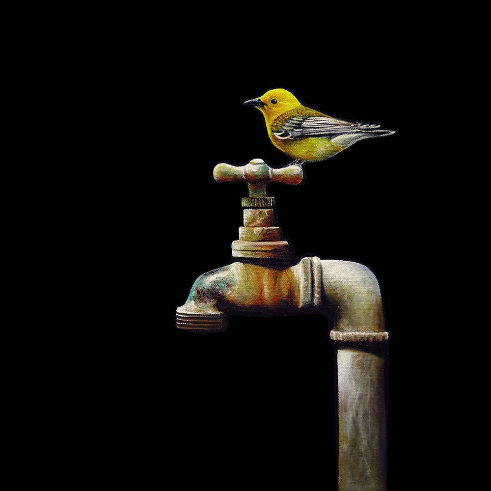 Spigot No. 3   |   12 x 12   |   Oil on canvas