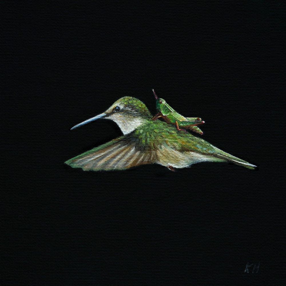 Hummingbird Express | 6.5 x 6.5 | Oil on canvas panel