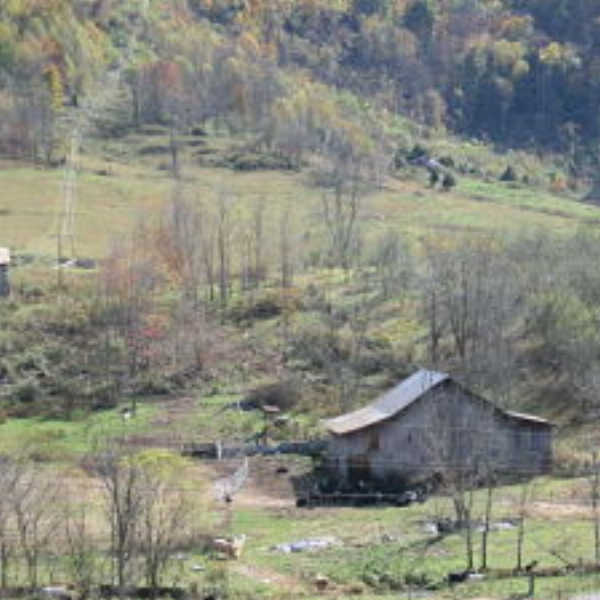 Valilee Farms  - Let our 3br AgroBnB in SW Virginia be your home for a few nights, or longer.  Located in a scenic valley in the shadow of Powell Mountain, near the Lee County/Scott County line.