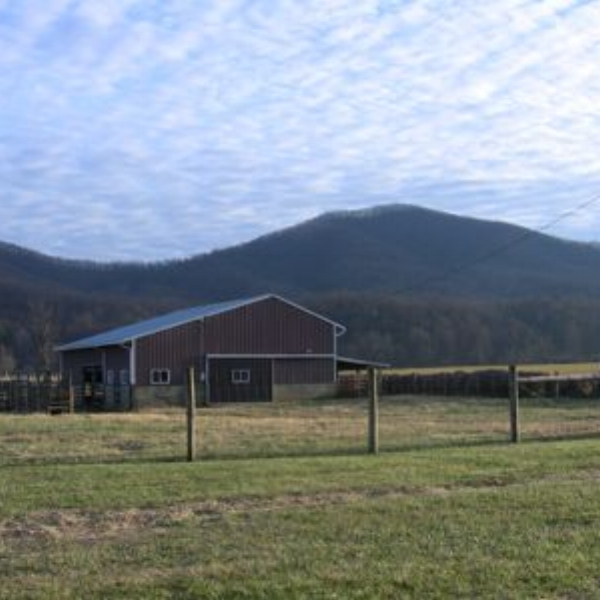 Rockfish Valley Farm AgroBnB  - Charlottesville, Nellysford, Wintergreen, Central Virginia, are all nearby.  The Appalachian Trail and Washington National Forest are at the backdoor.