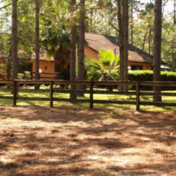 Fiddler's Green Ranch  - Fiddler's Green Ranch is a unique resort destination in the center of Florida's Ocala's National Forrest.  Each offers its own cozy setting overlooking the ranch grounds.