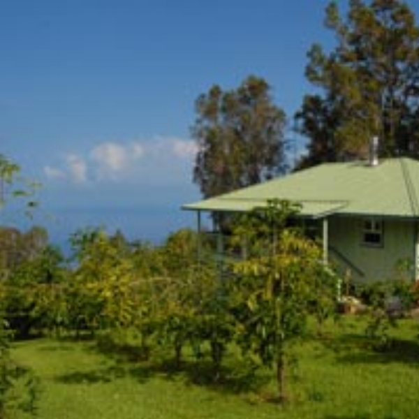 Kona Rainforest Farms  - Our Guesthouse features a 2br/1ba bright and airy home nestled between the coffee trees and rainforest on organic 41-acre Kona coffee farm.