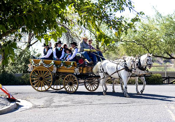 Arizona Horse Carriage  - Arizona Carriage Company excels in professional luxury services to compliment your vision of the perfect wedding. Having our horse drawn carriage at your wedding will set the pace.