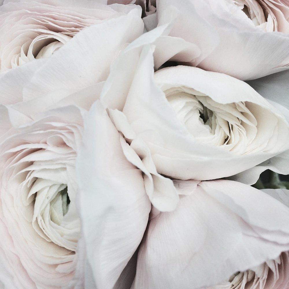 floral designs -