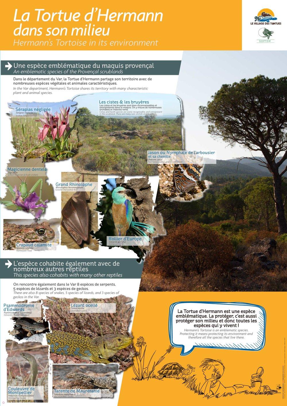 Les panneaux pédagogiques du Village des Tortues de Carnoules ont été pensés et réalisés par la SOPTOM en 2017 -