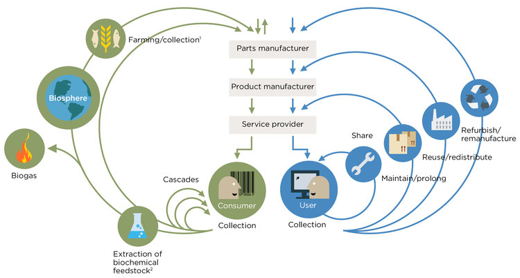 Circular Economy System Diagram from the  Ellen MacArthur Foundation .