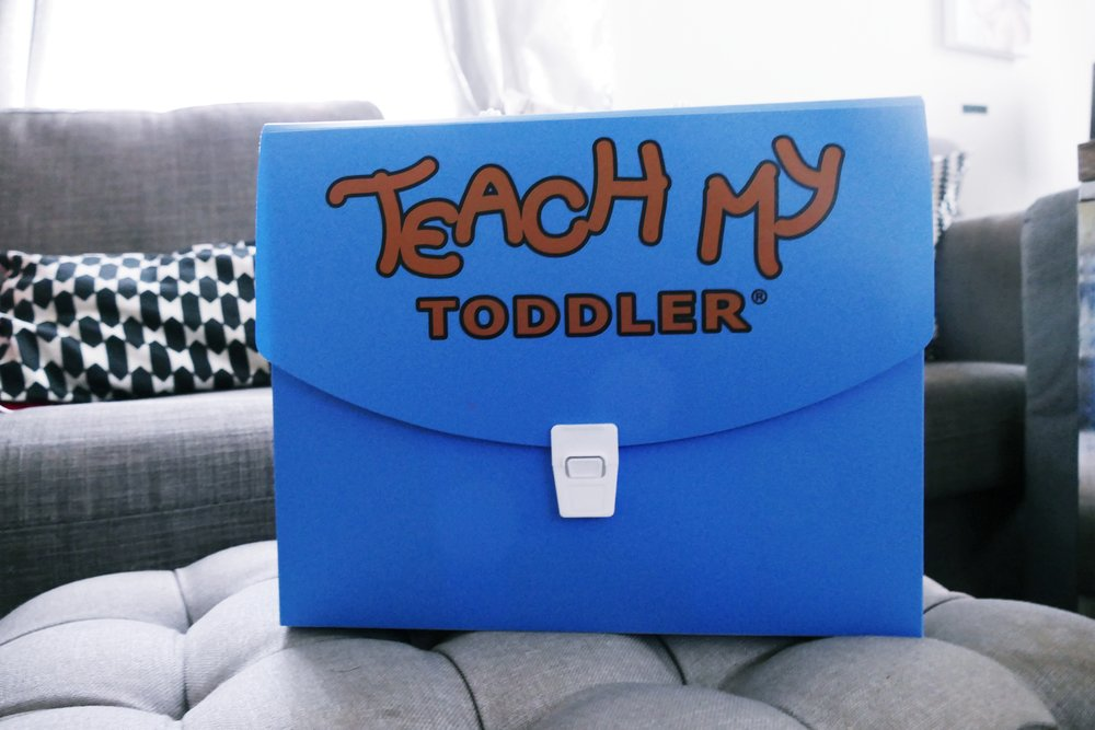 Teach My Toddler Learning Kit.jpg