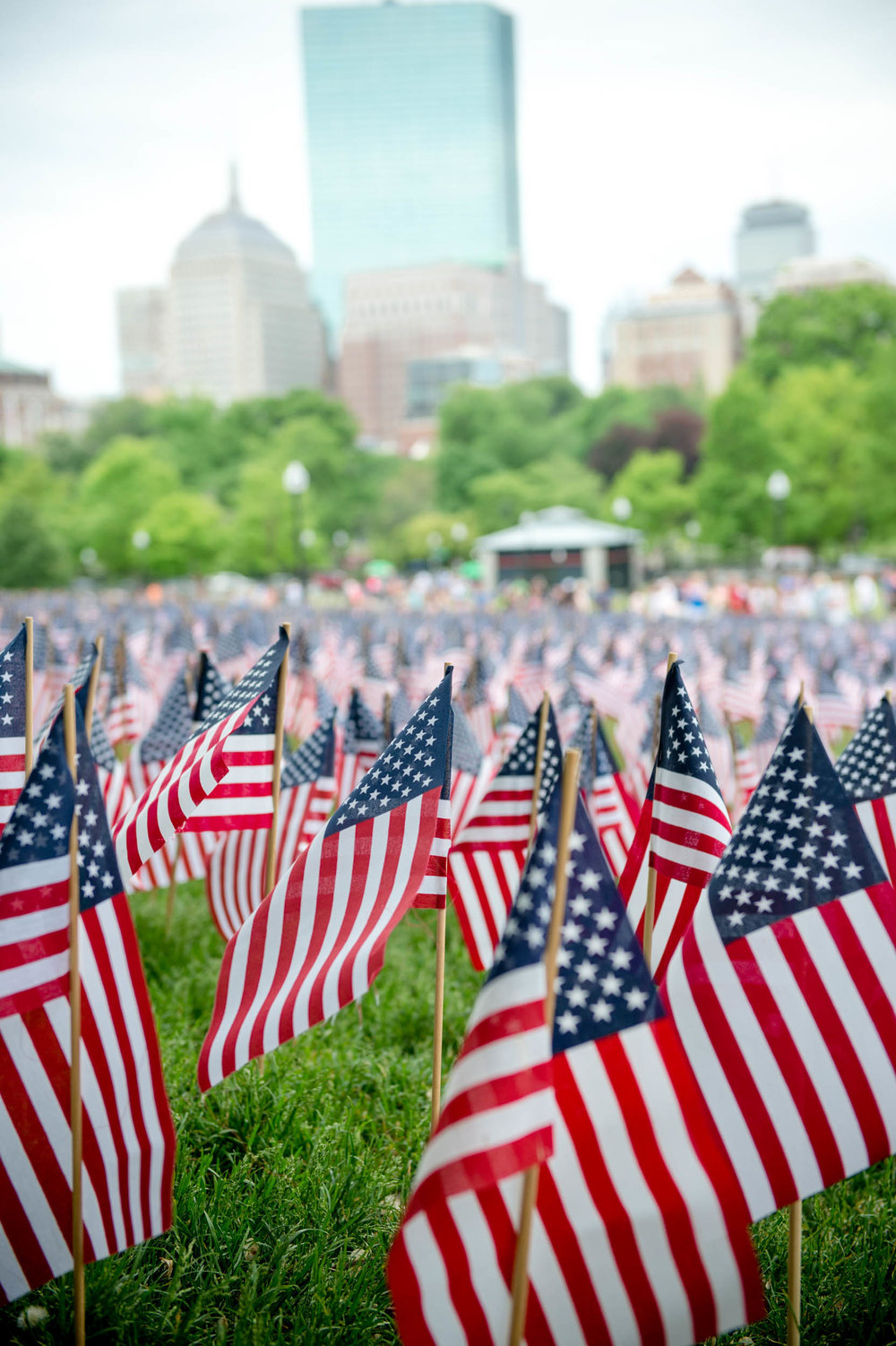 Maura Wayman Photography, Photography, Corporate Photography, stock, stock images, Massachusetts, Boston, Metro West, Wellesley, flags, field, field of flags, cityscape, tall building, Boston Common, Memorial day,