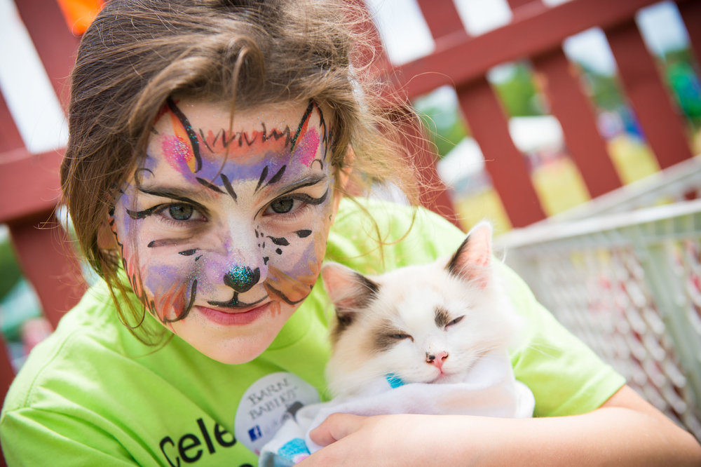 Maura Wayman Photography, Photography, Corporate Photography, Massachusetts, Boston, Metro West, events, Corporate events, Photographer, Functions, Parties, Fundraisers, Biogen, hemophilia walk, hemophilia, blue hills, girl, cat, kitten, face paint,