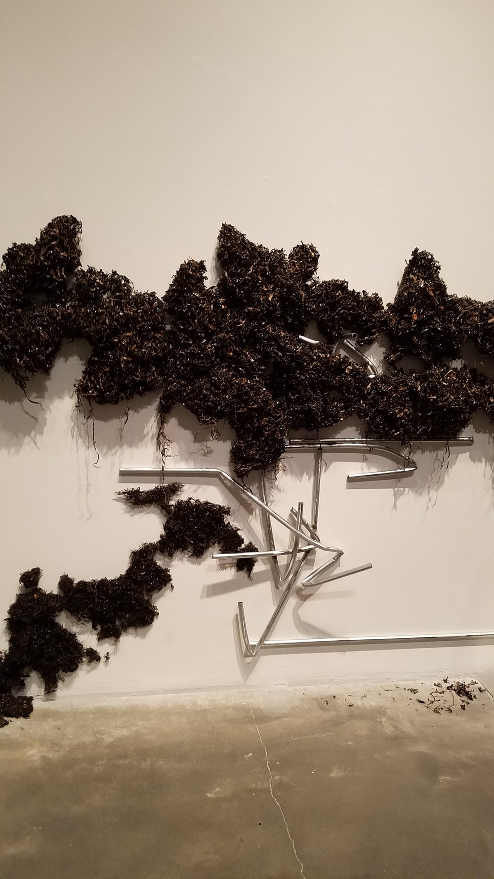 Violet Dennison (b. 1989, Bridgeport, CT),  M.O.O.P. , 2018, seagrass collected in the Florida Keys, resin, and electrical metallic tubing conduit, courtesy of the artist