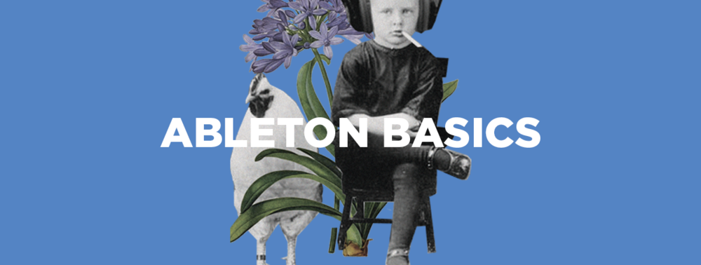 Ableton Basics.png