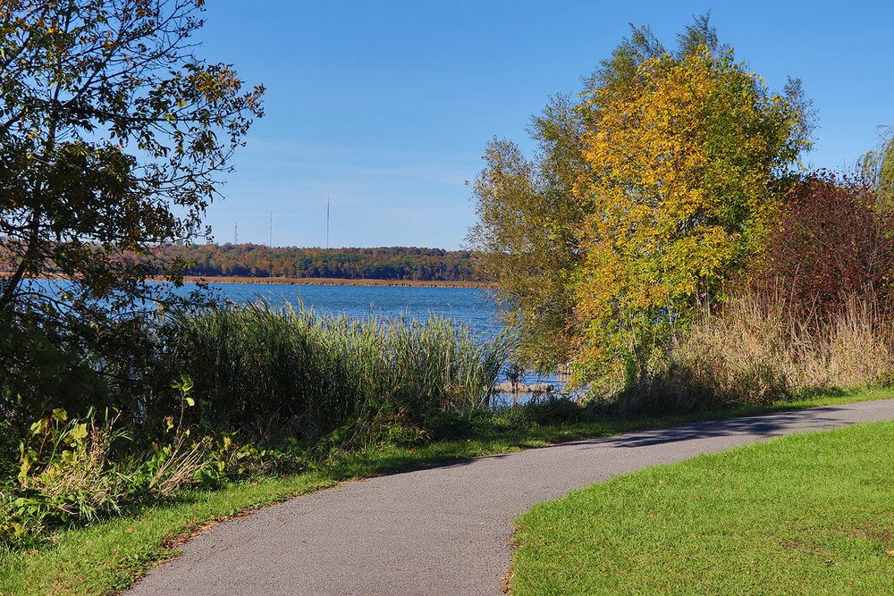 Greenwood_Park_Kingston_45.JPG