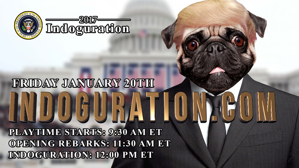 Dog-DonaldTrump-Playbuzz.jpg