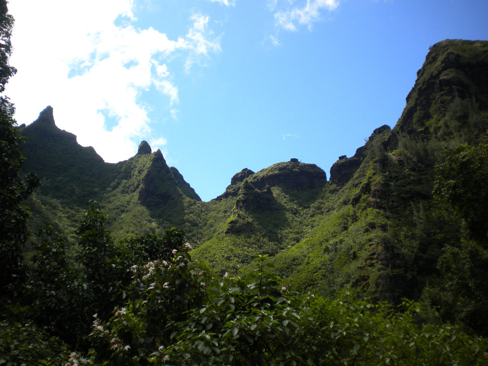 Napali Cliffs from Limahuli Gardens
