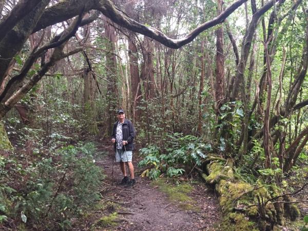 Kulapuhi-Trail-kauai.jpg