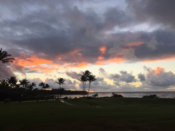 sunrise_kauai-pinks_1720.jpg