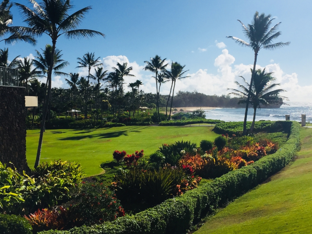 grand_hyatt_kauai_lawns_1748 (Edited).jpg