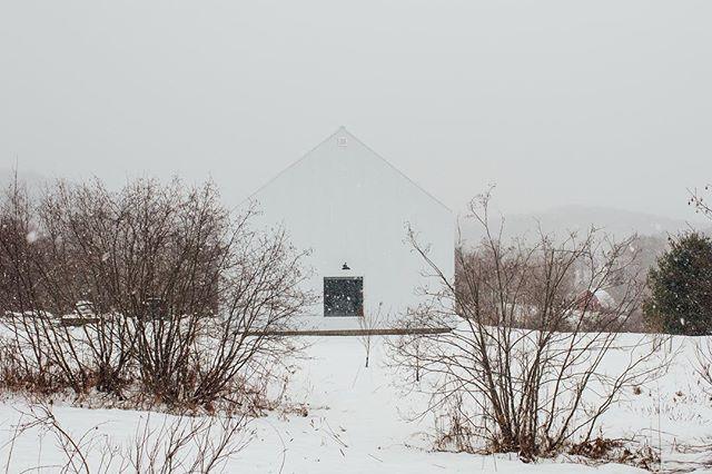 White on white ❄️ @bilderphoto